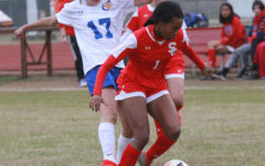 Soccer teams head into district with winning records